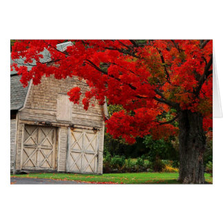 Autumn Red Card