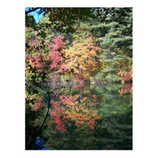 Autumn Reflections Landscape I Postcard