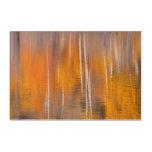 Autumn Reflections on Beaver Pond | Winthrop, WA Acrylic Print