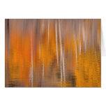 Autumn Reflections on Beaver Pond | Winthrop, WA Card