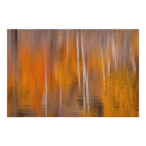 Autumn Reflections on Beaver Pond | Winthrop, WA Poster