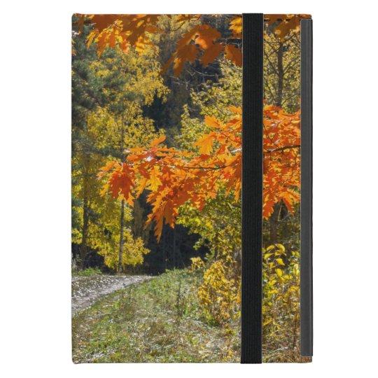 Autumn road covers for iPad mini