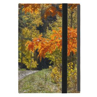Autumn road iPad mini cover
