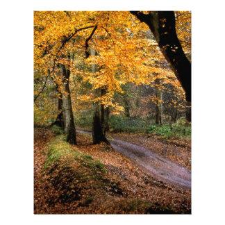 Autumn Road Less Traveled Custom Letterhead