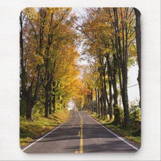 Autumn Road Mouse Pad