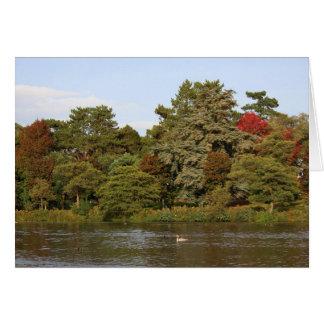 Autumn, Roath Park Lake, Cardiff Card