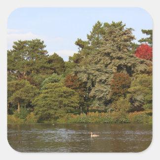 Autumn, Roath Park Lake, Cardiff Square Sticker