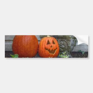 Autumn Scene Bumper Sticker