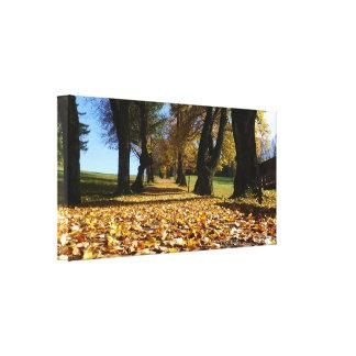 Autumn scene canvas print