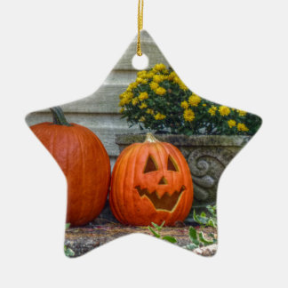 Autumn Scene Ceramic Star Ornament