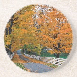 Autumn Scenic Backroad New Hampshire Coaster