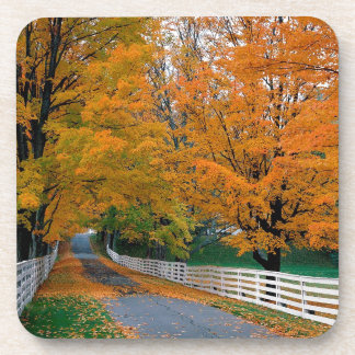 Autumn Scenic Backroad New Hampshire Beverage Coasters