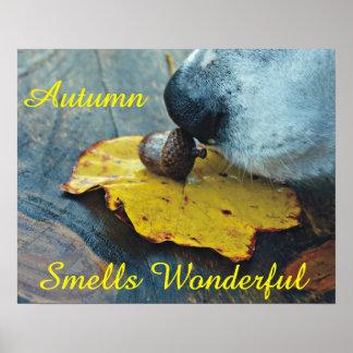 Autumn Smells Wonderful Dog Sniffing Acorn Poster