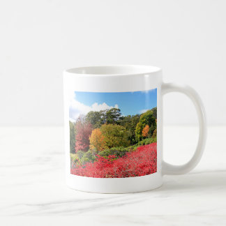 Autumn splendour, Adelaide Hills Coffee Mug