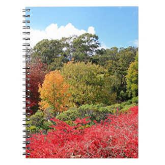 Autumn splendour, Adelaide Hills Spiral Note Books