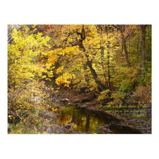 Autumn Splendour III Postcard