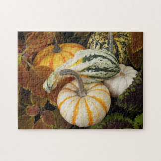 Autumn Squash Photo Jigsaw Puzzle