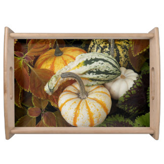 Autumn Squash Photo Serving Tray