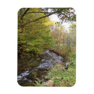 Autumn Stream magnet