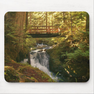 Autumn stream mouse pad
