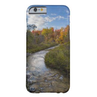Autumn Stream Phone Case