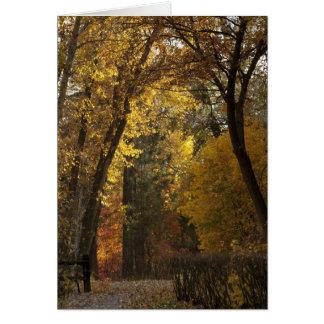 Autumn Stroll through Greenough Park Card