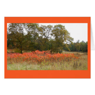Autumn Sumac II Blank Notecard