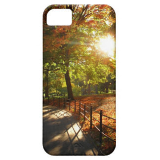 Autumn Sun in Central Park - New York City iPhone 5 Case