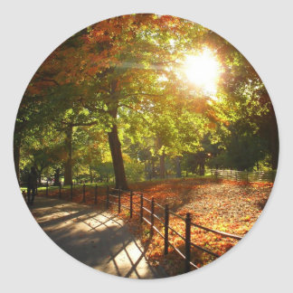 Autumn Sun in Central Park, New York City Round Sticker