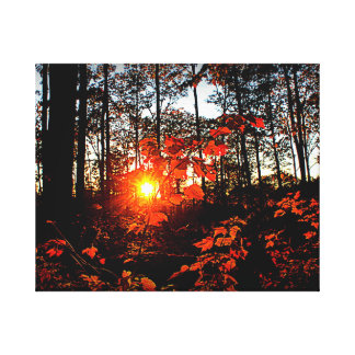 Autumn Sunset Canvas Print