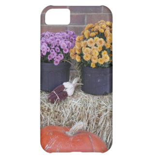 Autumn Thanksgiving Harvest Fall Scene iPhone 5C Cases