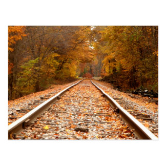 Autumn Tracks postcard