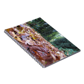"""""""Autumn Trail"""" Photo Notebook (80 Pages B&W)"""