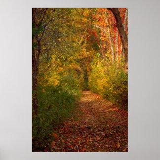 Autumn  Trail Print
