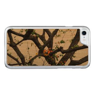 Autumn Tree Branches Carved iPhone 7 Case