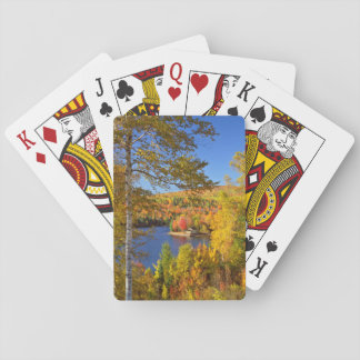 Autumn tree landscape, Maine Playing Cards