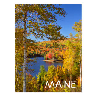 Autumn tree landscape, Maine Postcard