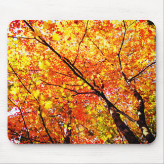 Autumn Tree Leaves Mouse Pad