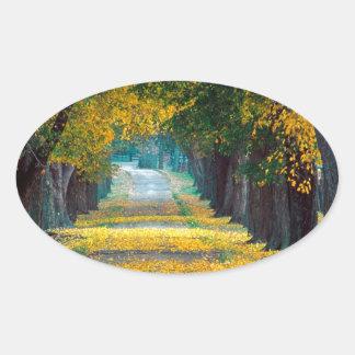 Autumn Tree Lined Roadway Louisville Kentucky Oval Sticker