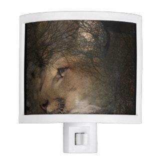 Autumn tree silhouette mountain lion wild cougar night light