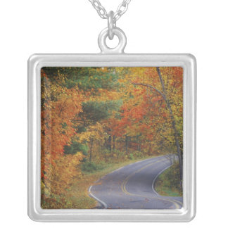 Autumn trees line roadway in Itasca State Park Square Pendant Necklace