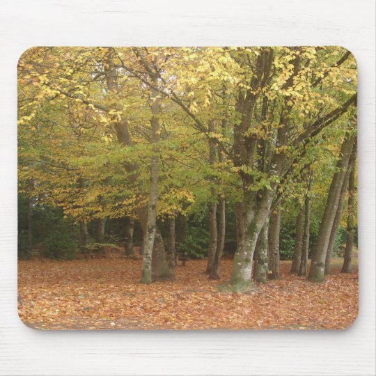 Autumn trees mouse pad