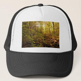Autumn Trees on Willard Brook Trucker Hat