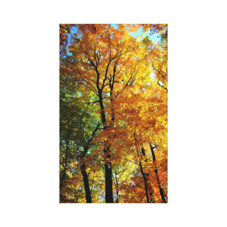 Autumn Trees Stretched Canvas Print