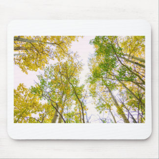 Autumn Turning Mouse Pad