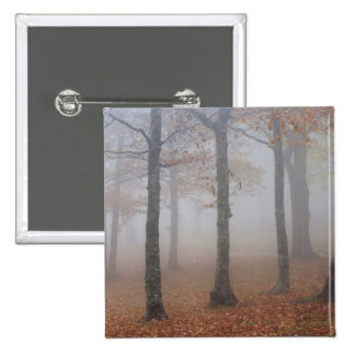 Autumn view of foggy forest, Grandfather 2 Inch Square Button