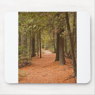 Autumn Walk Mouse Pads