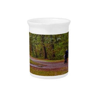 Autumn walk pitcher