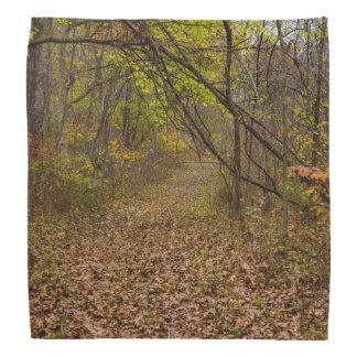 Autumn Walkway Do-rags