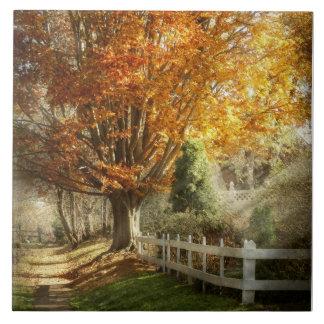 Autumn - Westfield, NJ - I love autumn Tile